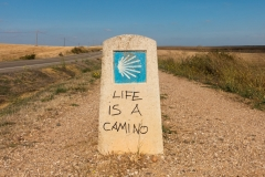 Life is a Camino